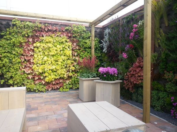 Landscaping gradina interioara perete plante