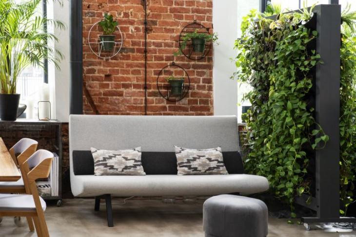 perete fals plante perete caramida plante canapea gri